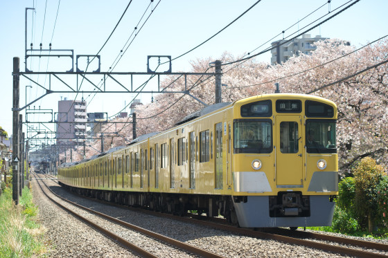 DSC03849a