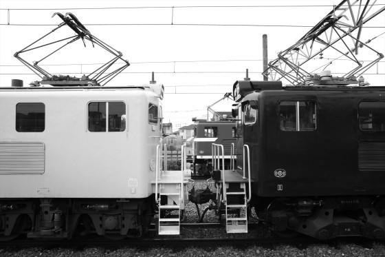 DSC00556a