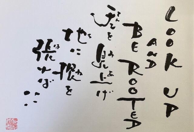 20180607-182821.jpg