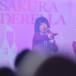 【ライブレポート】さくらシンデレラがニコファーレ2周年記念で新曲『さくらヒラヒラ』を披露!150(イチゴゼロ)、24 o'clock 、4U(フォーユー)がニコファーレに初登場