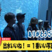 SKE48高柳明音・わーすた廣川廣川奈々がまさかの塩対応!avex写真部の横浜・八景島シーパラダイス編が公開中!