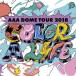 AAAの4大ドームツアーを収めたDVD & Blu-rayが3月6日(水)に発売決定!!
